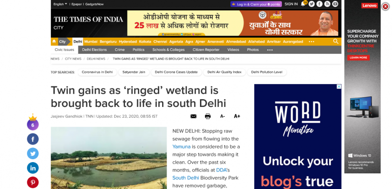 Twin gains as 'ringed' wetland is brought back to life in south Delhi