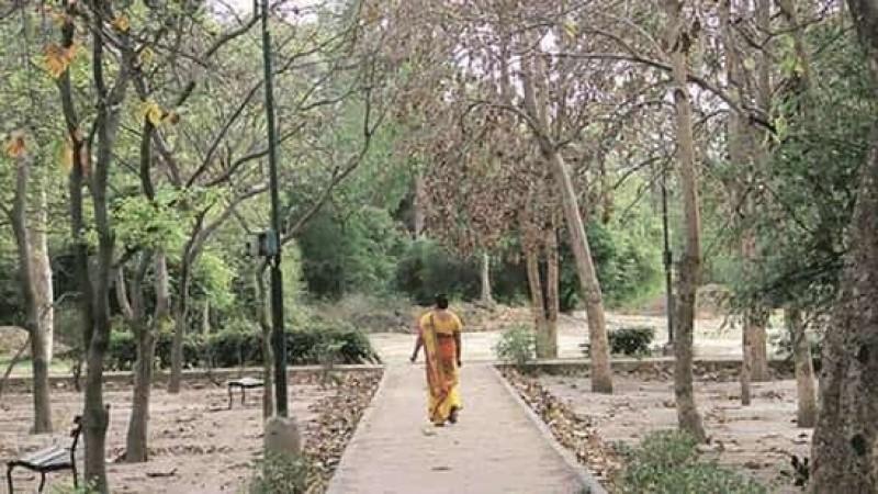 South Delhi parks, north Delhi schools to start yoga classes soon