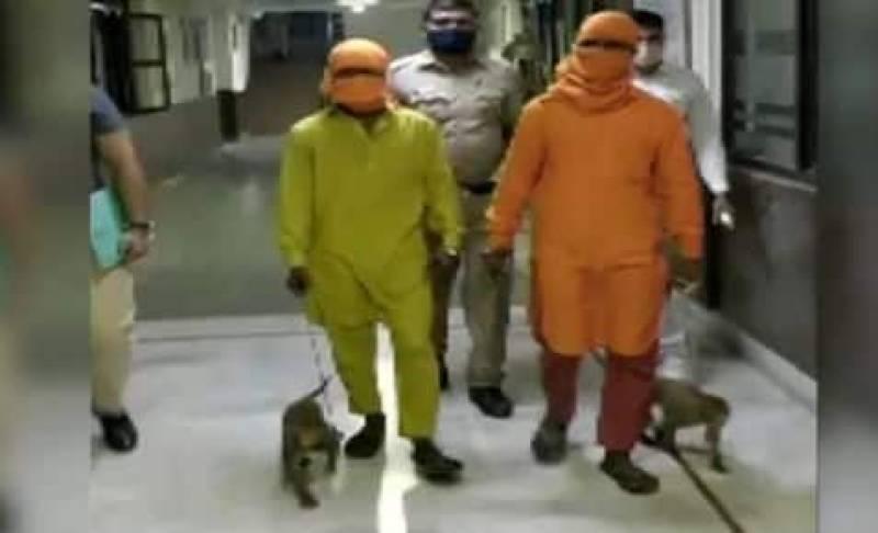 Two Men Allegedly Rob People Using Monkeys in South Delhi's Malviya Nagar, Arrested