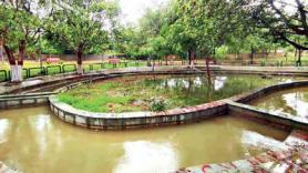 Jal shakti South Delhi civic body harvests power of rain