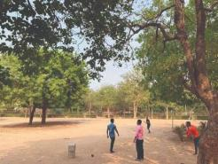 South Delhi residents can soon plant trees as gifts for loved ones in 20 SDMC parks