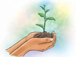 Plant saplings in south Delhi parks, name them after your dear ones